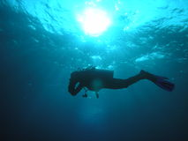 Diver Silhouette. Scuba diver silhouetted against the sun Stock Photography