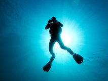 Scuba diver. Silhouette of diver who is swimming in open, blue water. The sun is behind the diver stock photography