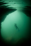 Diver in Submerged Cave. A snorkeler explores an underwater cave in Raja Ampat, Indonesia Royalty Free Stock Photography
