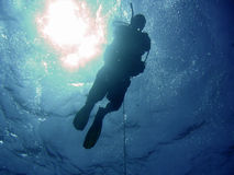 Diver and sun. Diver submerging along a rope, sun in background Royalty Free Stock Photos