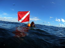 Diver at surface with dive flag. Diver at the surface after a dive on Turtle Ledge reef in Pompano Beach, Florida Royalty Free Stock Photo