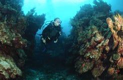 Diver in swim through. Royalty Free Stock Image
