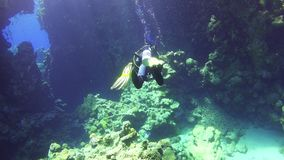 Diver Swim Through Underwater Cave stock video