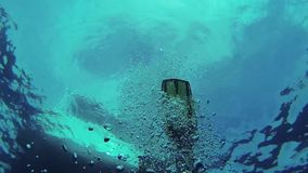 Diver swim underwater in flippers. Many bubbles. Blue clean ocean. Wetsuit. Hobby stock video