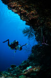 Diver swimming in Banda, Indonesia underwater photo Stock Image