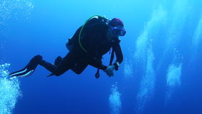 Diver swimming over Coral Reef.  stock video footage