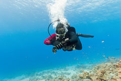 Diver swimming under water. Male scuba diver swimming under water Stock Photography