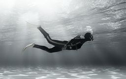 Diver swimming underwater. stock illustration