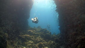 Diver swims among coral reefs stock video footage