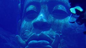 Diver Swims Past Ancient Statue In The Sea. Diver in scuba gear swimming near an exotic statue of a head underwater stock video footage