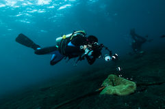 Diver take a photo video upon coral lembeh indonesia scuba diving Stock Images
