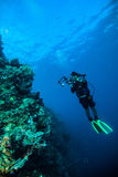 Diver take a video upon coral kapoposang indonesia scuba diving Stock Images