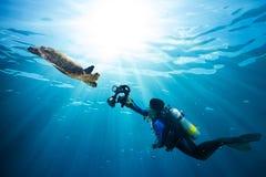 Diver takes photo of sea turtle stock photo