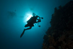 Diver - Underwater Photographer- Silhouette Royalty Free Stock Photography