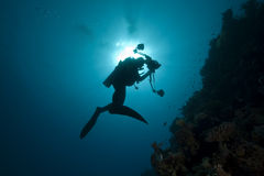 Diver - underwater photographer- silhouette Royalty Free Stock Images