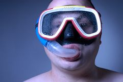 Diver: wet II. Diver Royalty Free Stock Images