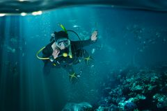 Diver in wetsuit and diving gear, underwater view Royalty Free Stock Photos