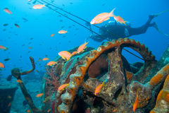 Diver and wreck Stock Photo