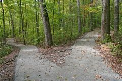 Diverging Paths royalty free stock photo