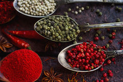 Divers épices, écrous et herbes indiens dans les cuillères et des cuvettes en bois en métal Images libres de droits