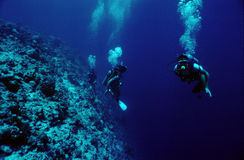 Divers. Three divers going up the reef. Grainy shot stock photo