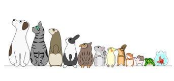 Divers animaux familiers dans une rangée, regardant loin illustration de vecteur