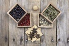 Divers anis de poivrons, de genévrier et d'étoile Photographie stock