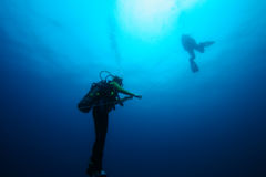 Divers ascending. From the deep on a line Royalty Free Stock Image