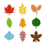 Divers Autumn Leaf Hand Drawing Photographie stock