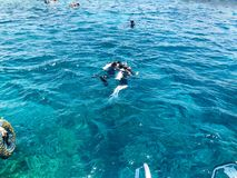 Divers in black diving waterproof suits with shiny metal aluminum cylinders float, immersed in blue sea water on vacation, sea cru stock photography