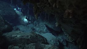Divers in cave. Underwater landscape with group of divers in cenote cave dos ojos stock video