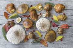 Divers champignons et feuilles d'automne sur la vieille table en bois Images stock