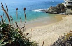 Divers Cove Beach, Laguna Beach, California. Stock Image