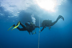 Divers decompressing underwater on a rope Stock Photo