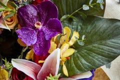 Divers des fleurs photo stock