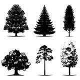 Divers des silhouettes d'arbre de vecteur dans la couleur noire illustration libre de droits