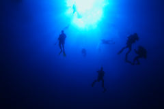Divers descending Stock Image