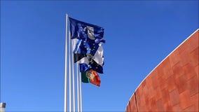 Divers drapeaux de vol à Lisbonne banque de vidéos