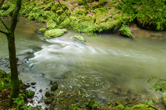 Divers effets en corps de l'eau capturé photographie stock