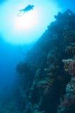 Divers exploring a large shipwreck Royalty Free Stock Photo