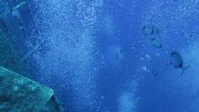 Divers exploring Zenobia shipwreck stock footage