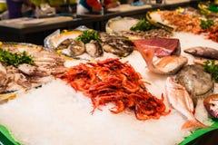 Divers fruits de mer et poissons sur le plateau de glace sur le marché de fruits de mer Images stock