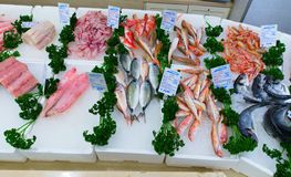 Divers fruits de mer frais en boutique de Pescheria Bari, Italie Photo stock