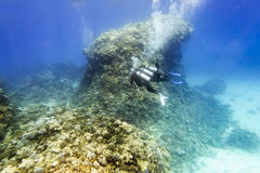 Divers in gear swim under water amid coral reef Royalty Free Stock Images