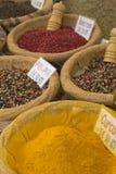 Divers genres d'épices photos libres de droits