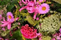 Divers genres de fleurs dans beaucoup de couleurs Image libre de droits
