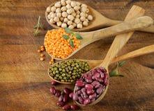 Divers genres de légumineuses - haricots, lentilles, pois chiches, mung image stock