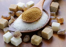 Divers genres de sucre, brun, blanc et raffiné photos libres de droits