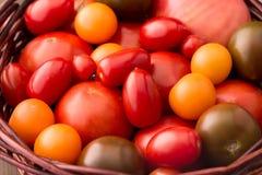 Divers genres de tomates dans le panier Image stock