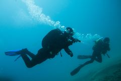 Divers in immersion near the reef Stock Photos